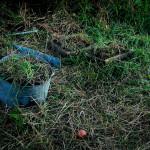 Фернандель `56 (Найденные ёмкости, земля, время, 2009) - фото К. Бочарова